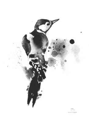 tikka-mustavalkoinen-50x70